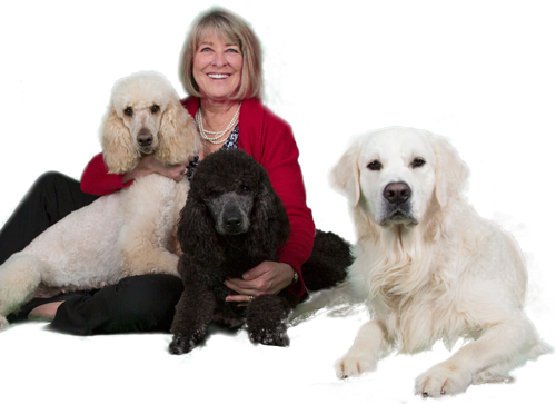 Photo of Mary and Dogs